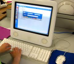 A picture of a person on a computer searching for consumer products.